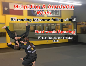 in Houston - Meyerland Martial Art Center - Grappling & Acrobatic Week!
