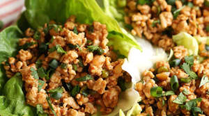 Personal Training  in Los Gatos - Mint Condition Fitness - Recipe of the Week: Larry's Turkey Lettuce Wraps