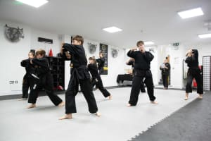 Introduction to Training at Tring Martial Arts Part 2 - Curriculum Testing