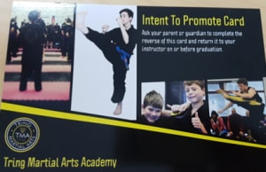Introduction to Training at Tring Martial Arts Part 3 - Rewarding Good Behaviour