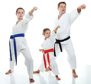 Adult Martial Arts near  Oakleigh - Challenge Martial Arts & Fitness Centre  - The 8 main elements of a Martial Arts Class