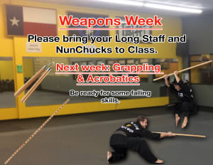 in Houston - Meyerland Martial Art Center - Weapons Week!