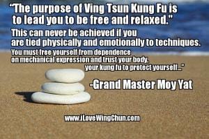 The Purpose of Wing Chun