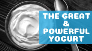 The Great & Powerful Yogurt