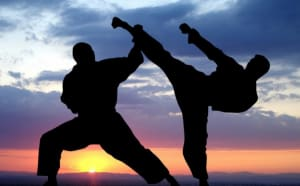 Why everyone should study martial arts
