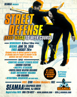 10 Week Street Defense (Krav Maga) Course