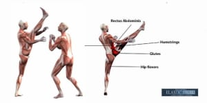 COMMON INJURIES IN THE MARTIAL ARTS: KNEE AND HAMSTRINGS (PART 2 OF 3)