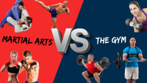 MARTIAL ARTS vs THE GYM