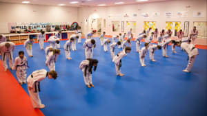 The Five Tenets of Tae Kwon Do