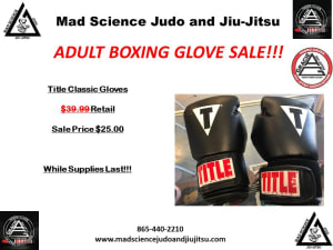 Adult Boxing Glove Sale!!!