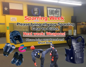 This Week is Sparring!