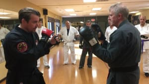 Punch Alignment and Combination Drills From Adult Class (Video)