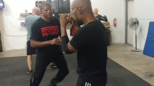 Bullish: Jeet Kune Do Unlimited Monday Class (Adult Martial Arts in Odenton, Maryland)