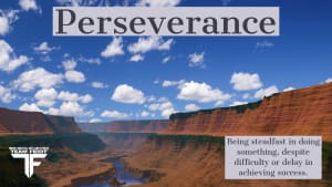 Black Belt Principle #5- Perseverance