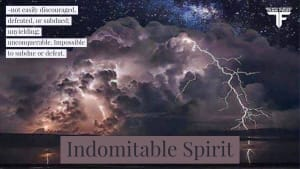 Black Belt Principle #6- Indomitable Spirit