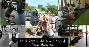 The Truth About Your Muscles