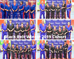 The Essence of Black Belt