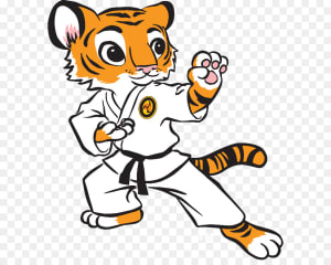 Tiger Paw Training By Professional Fitness Trainer Well known Through South Florida & USA