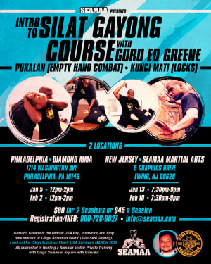 Intro to Silat Gayong Course