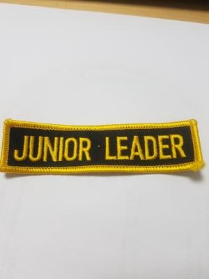 Junior Leadership Programme at Tring Martial Arts Academy