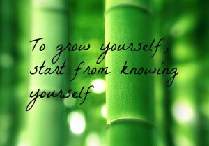 Know Yourself to Grow Yourself