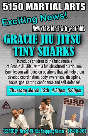 Kids Jiu Jitsu