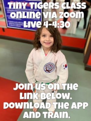 Information on online classes Tiny Tigers Tuesday March 17th