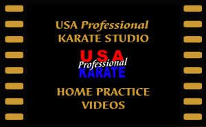 Announcing Home Practice Videos