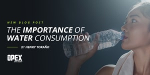BLOG POST (ENG): The importance of water consumption.