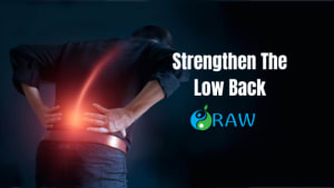 Improve Back Pain