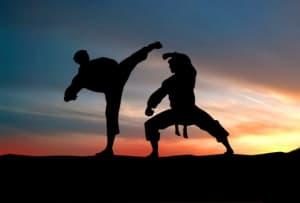 Burn 500 Calories In 1 Martial Art Class