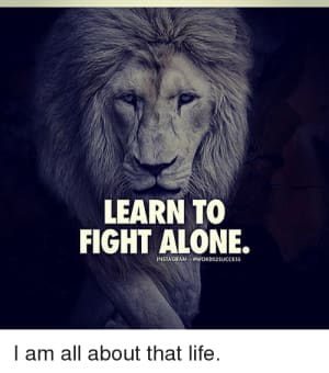 Learn to Fight