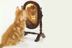 The answer is in the mirror (check this out)