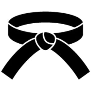 What Does Earning a Black Belt Mean?