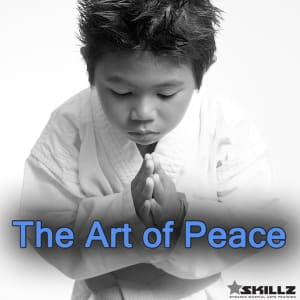 Martial Arts - The Art of Peace