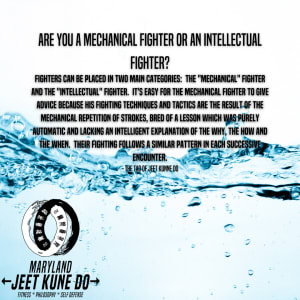 Are you a Mechanical Fighter or an Intellectual Fighter?