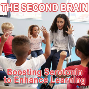 The Second Brain: Boosting Serotonin to Enhance Learning
