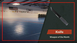 Weapon of the Month - Knife