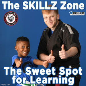 The SKILLZ Zone  The Sweet Spot for Learning