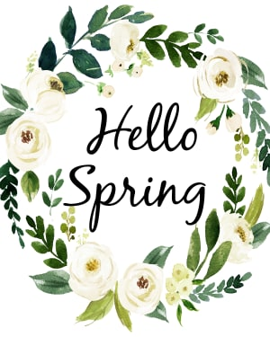 Jump Into a New Hobby This Spring at RIMA!
