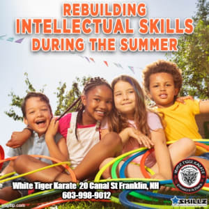 Rebuilding Intellectual Skills During the Summer