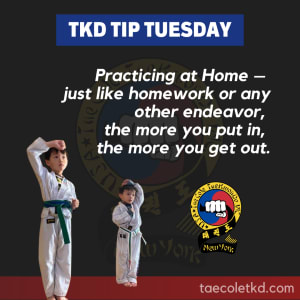 TKD Tip Tuesday: Practicing at Home