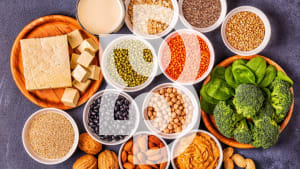 How to Incorporate Plant Based Protein Into Your Diet