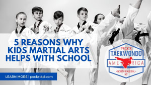 5 Reasons Why Kids Martial Arts Helps With School!