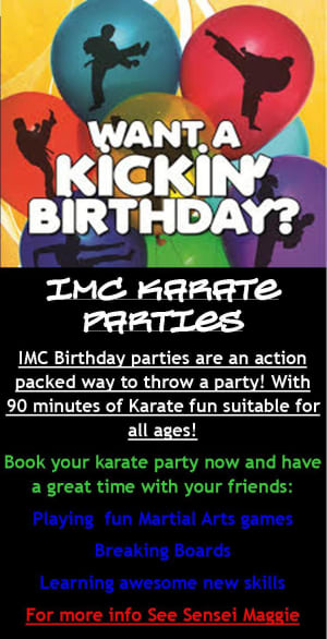 Karate Birthday Parties