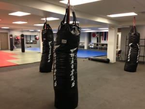 Kids Martial Arts in Philadelphia - Commando Krav Maga and Diamond Mixed Martial Arts - School closings for the rest of the summer