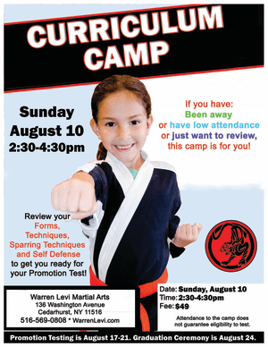 Kids Martial Arts  in Five Towns - Warren Levi Martial Arts & Fitness - FIVE TOWNS CURRICULUM CAMP