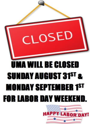 Kids Martial Arts in Chicago - Ultimate Martial Arts - Labor Day Holiday