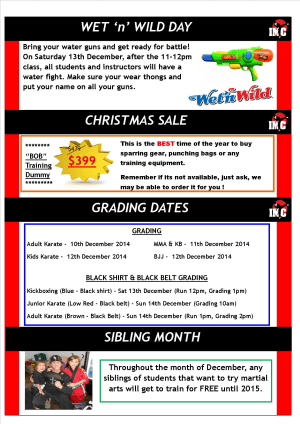 Kids Martial Arts  in St Clair, Kemps Creek & Hoxton Park - International Martial Arts Centres - IMC News 4th December 2014