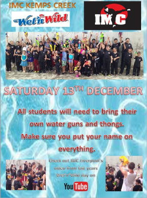 Kids Martial Arts  in St Clair, Kemps Creek & Hoxton Park - International Martial Arts Centres - WET n WILD Day